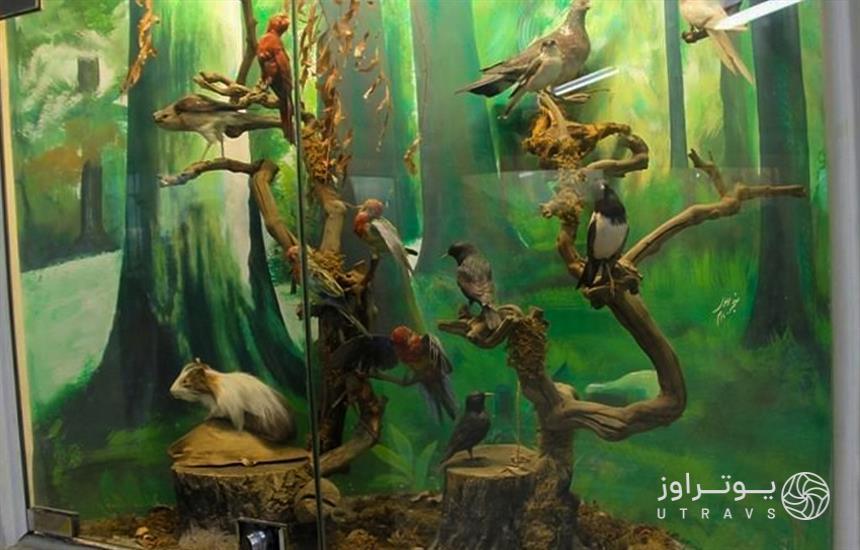 Museum of Science and Natural History of Khorasan Razavi