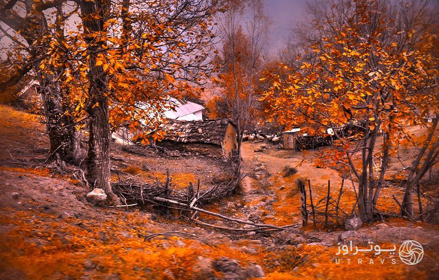 Autumn nature of Marian
